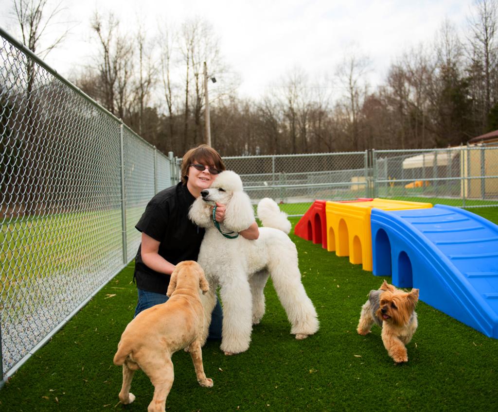 dog-groomer-statesville-nc2118