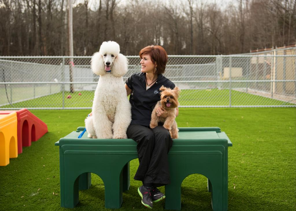 dog-groomer-statesville-nc2227